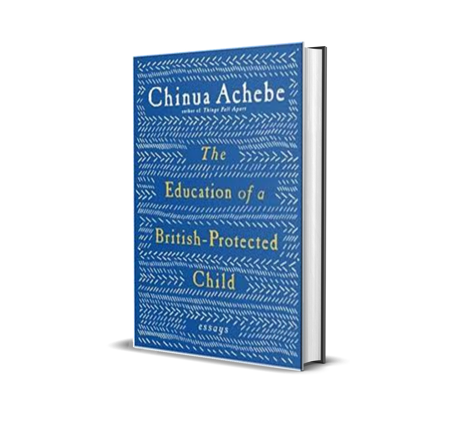 Education of a british-protected child chinua achebe