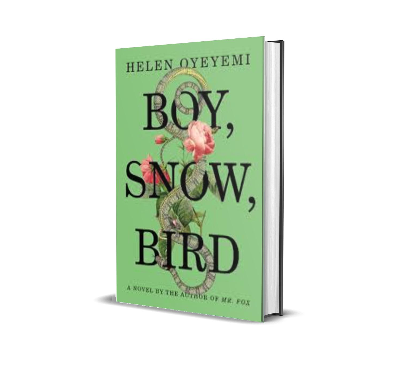 boy, snow, bird- helen oyeyemi