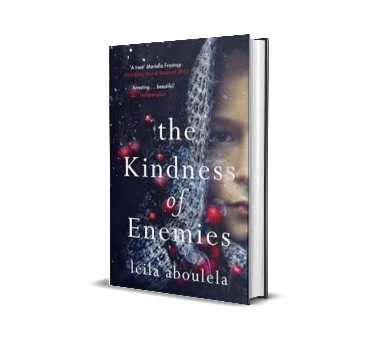 the kindness of enemie by leila aboulela