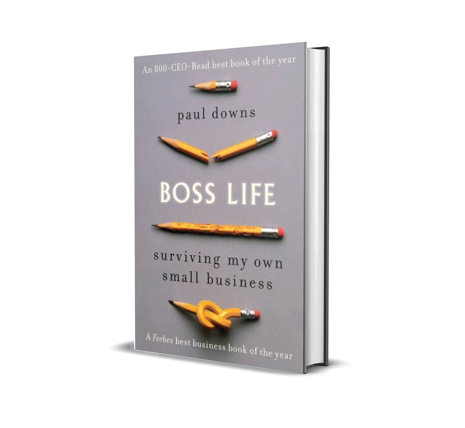 Boss life:surviving my own small business- Downs Paul