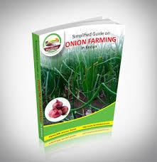 ONION FARMING GUIDE
