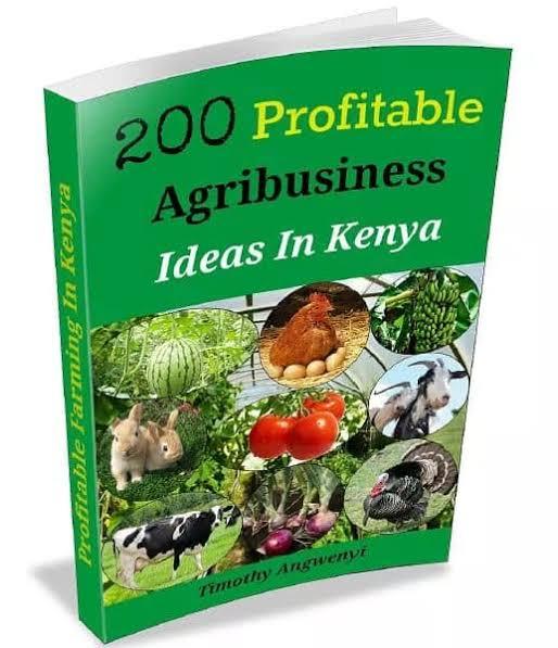 200 PROFITABLE AGRIBUSINESS IDEAS IN KENYA - Timothy Agwenyi