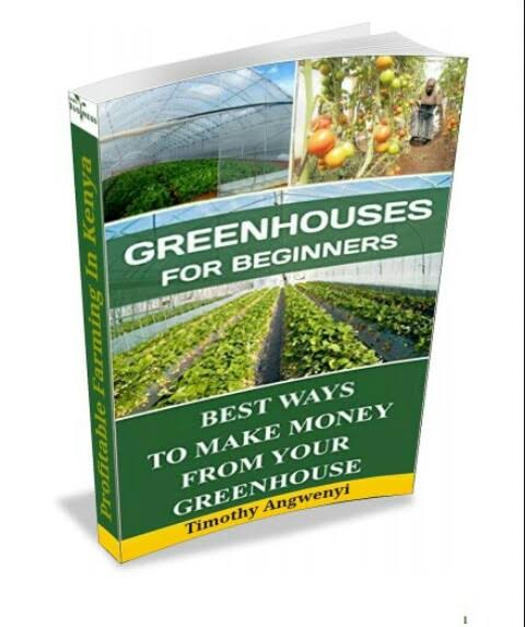 GREENHOUSES FOR BEGINNERS TIMOTHY ANGWENYI