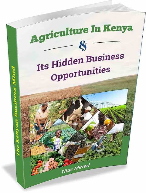 AGRICULTURE IN KENYA AND ITS HIDDEN BUSINESS OPPORTUNITIES - TITUS MIRIERI